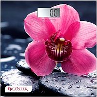 Весы напольные Centek CT-2421
