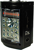 """Радиоприемник """"VIKEND WALK"""", бат.2*R20(не в компл.),220V,акб 1300мА/ч,USB,microSD,светод.фон,караоке"""