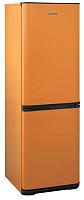 Холодильник 2-камерный БИРЮСА Т633 (оранжевый)