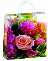 Пластиковая сумка-пакет BAL 152, 42*32 см. 13398
