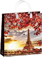 Пластиковая сумка-пакет BAL 146, 42*32 см (13397)