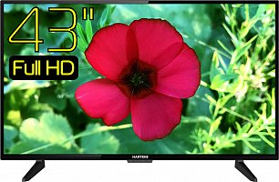 "Телевизор LED43"" Hartens HTV-43FHD03B"